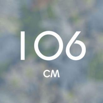106 см