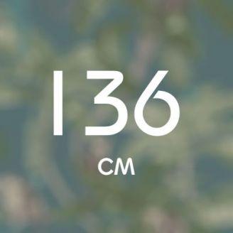 136 см
