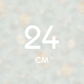 24 см