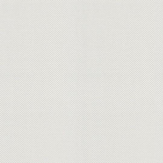 Обои под покраску 1455-12 AS Creation Meister Vlies 1.06 х 25 м