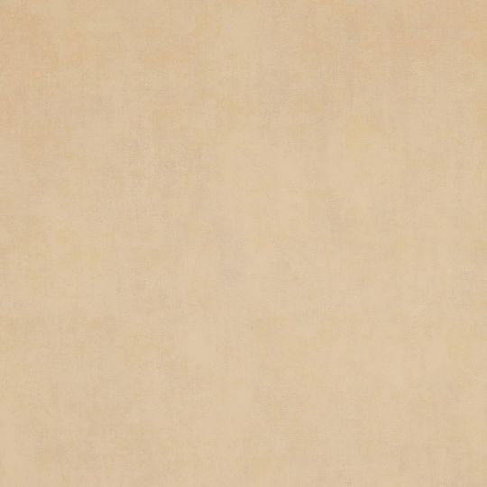 Шпалери BN International Indian Summer 218546 під штукатурку світло-бежеві