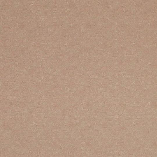 Шпалери BN International Indian Summer 218571 вуаль коричнева