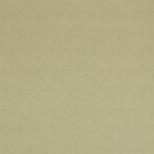Шпалери BN International Indian Summer 218573 вуаль салатова