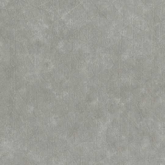 Обои Sirpi Sempre 3 24353 паутина сизый туман