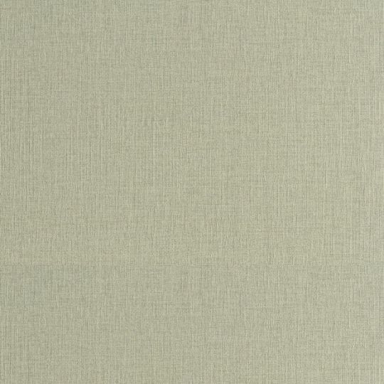 Шпалери Sirpi AltaGamma Home 3 24951 полотно блідо-салатовий
