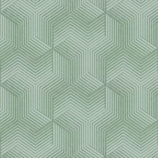 Велюрові шпалери Sirpi Italian Velour 25065 графіка зелена
