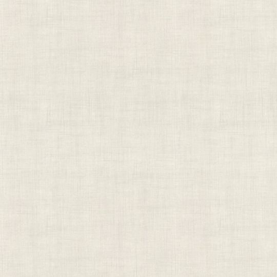 Шпалери AS Creation Moderno 2  36733-5 сіра однотонка 1,06 х 10,05 м