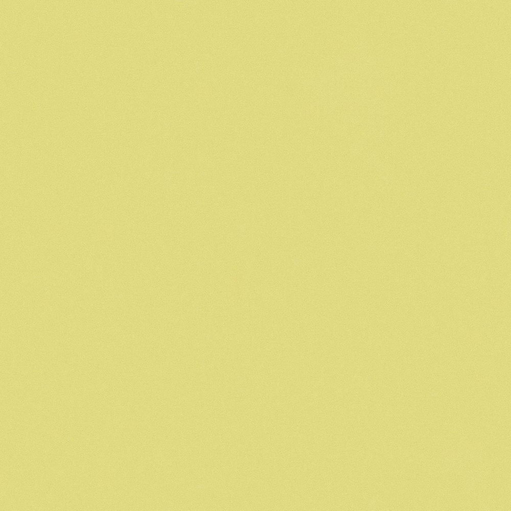 Обои AS Creation Metropolitan  36932-5 салатовая однотонка 0,53 х 10,05 м