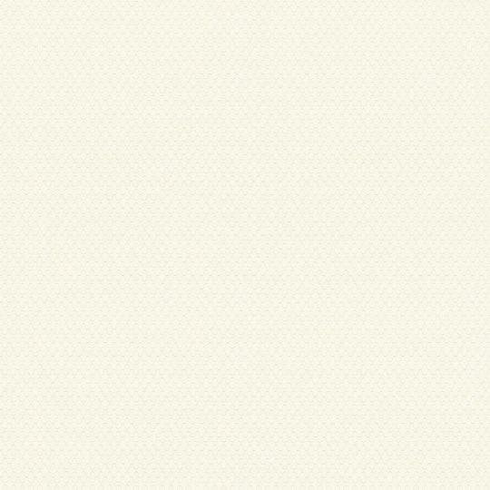 Шпалери AS Creation Trendwall 37121-1 мереживна сітка бежева на білому