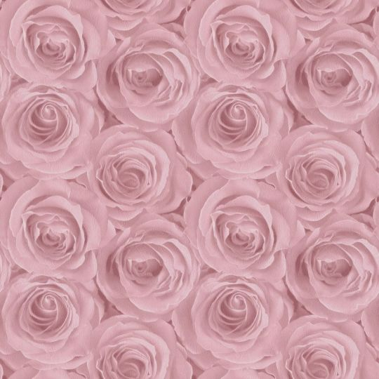 Шпалери AS Creation Roses 37644-1 3D троянди рожеві