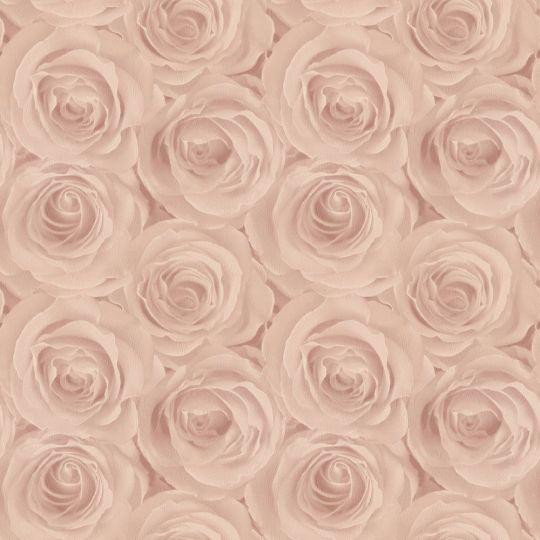 Обои AS Creation Roses 37644-2 3D розы персиковые