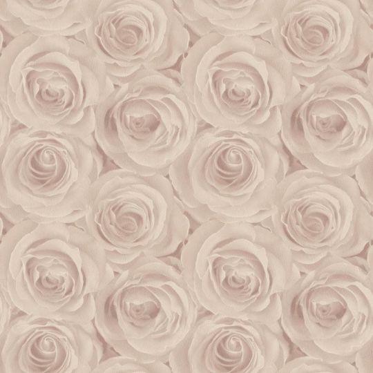 Метровые обои AS Creation Roses 37644-2 персиковые розы 3D эффект