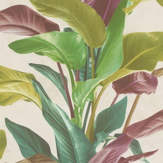 Обои AS Creation Metropolitan 2 37862-1 банановое дерево разноцветное