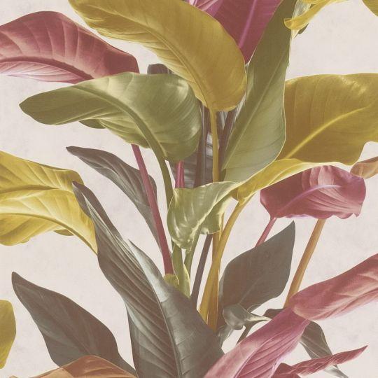Обои AS Creation Metropolitan 2 37862-2 банановое дерево красные