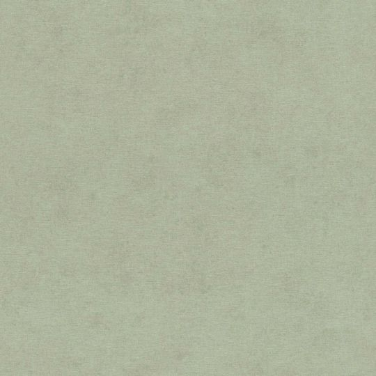 Обои Rasch Kimono 408171 однотонные бледно-зеленый