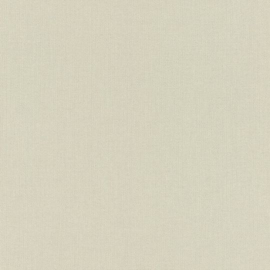 Шпалери Rasch Poetry 2 423914 однотонне полотно світлий сірий