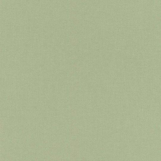 Шпалери Rasch Poetry 2 423938 однотонне полотно салатовое