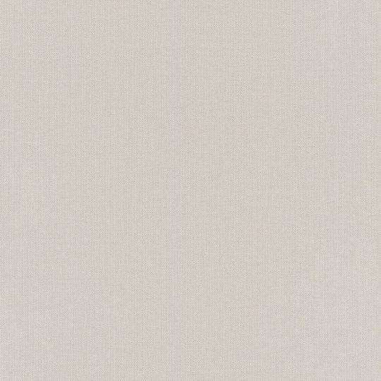 Шпалери Rasch Poetry 2 424072 однотонне полотно світло-сіре