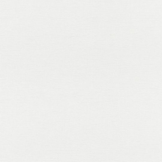 Обои Rasch Club Botanique 531404 однотонные белоснежные