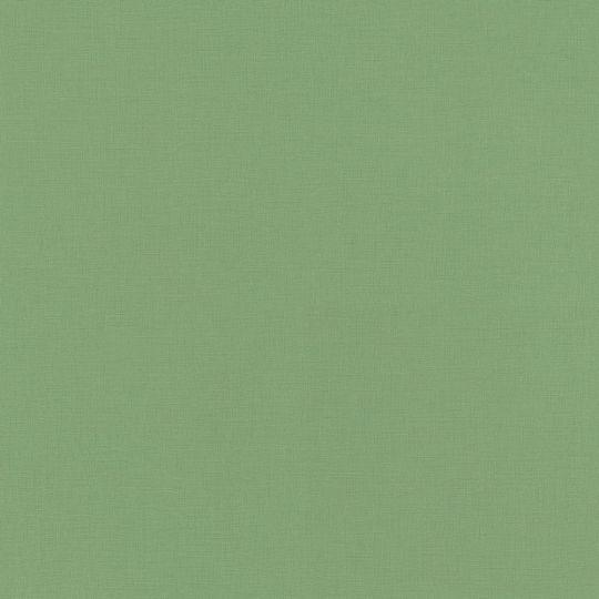 Обои Rasch Club Botanique 537918 однотонные салатовые