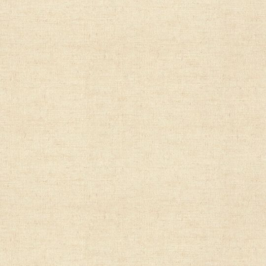Метрові шпалери Rasch Maximum 16 915945 під грубе полотно бежеві