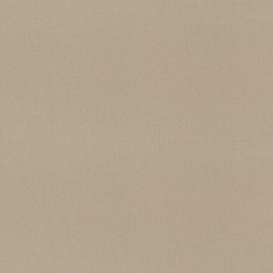 Метрові шпалери Rasch Maximum 16 960709 під полотно світло-коричневі