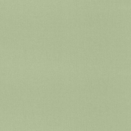Метровые обои Rasch Maximum 16 960716 под холст салатовые