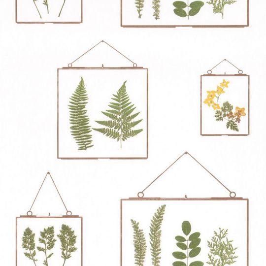Обои Caselio Au Bistrot d'Alice BIS100637070 гербарий зеленый