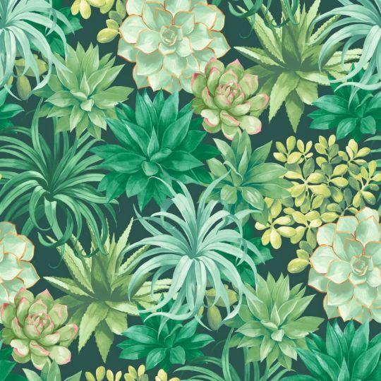 Шпалери Casadeco Botanica BOTA85917396 сукуленти яскраво-зелені