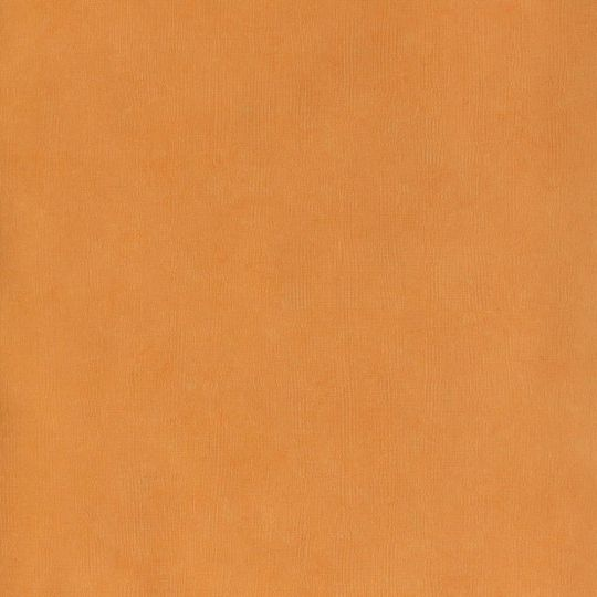 Шпалери Caselio Cavaillon CAV65073155 однотонне полотно абрикосового кольору