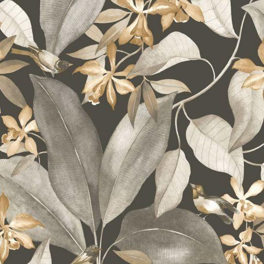 Шпалери Casadeco Delicacy DELY85382414 спів пташок сіро-коричневе на чорному