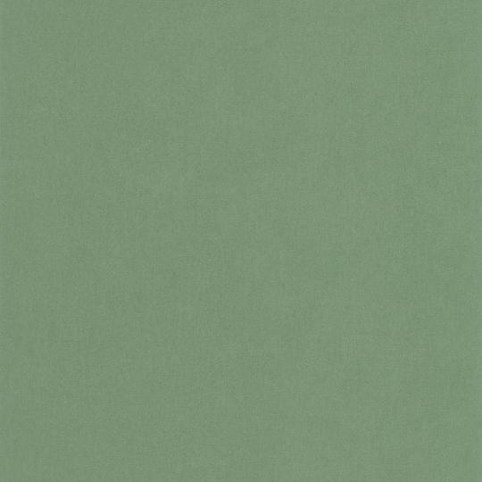 Шпалери Caselio Flower Power FLP64527170 однотонні зелені матові