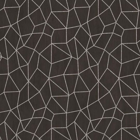 Обои Galerie Special FX G67694 серебряная паутинка на черном