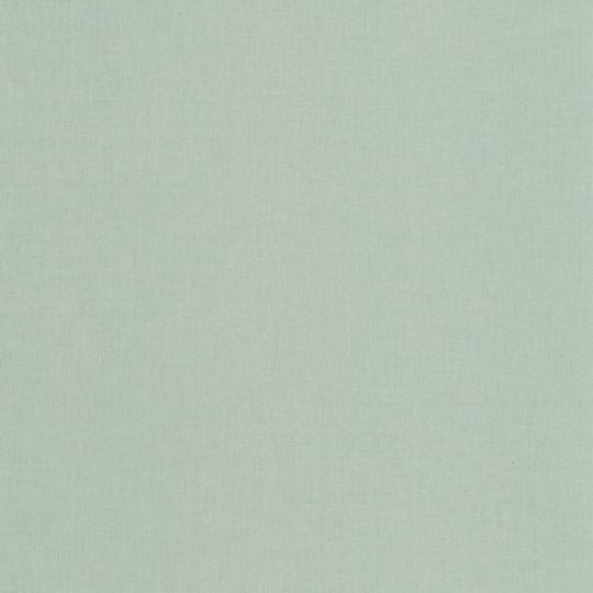 Обои Caselio Imagination IMG100607100 под рогожку бледно-салатовые