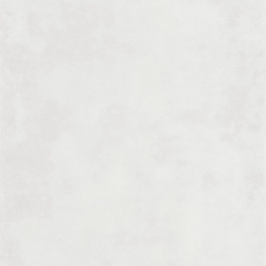 Обои Casadeco Montsegur MTSE80830101 под декоративную штукатурку белые