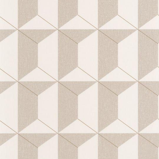 Шпалери Caselio Moove MVE101331903 призма біло-коричневі
