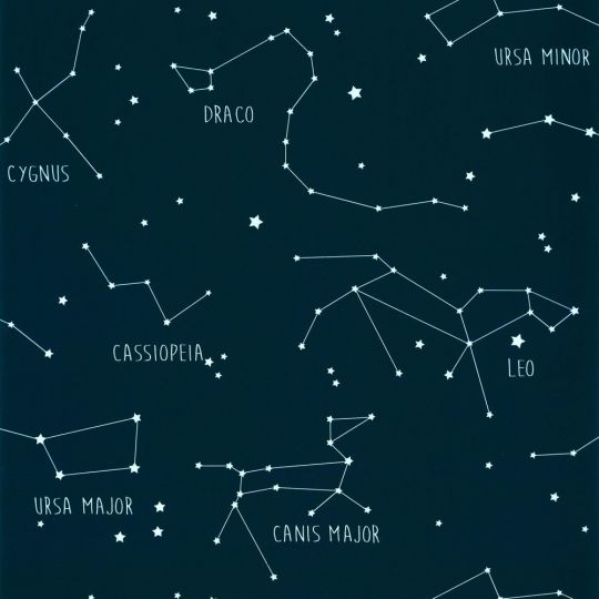 Дитячі шпалери Caselio Our Planet OUP101916918 сузір'я нічне небо