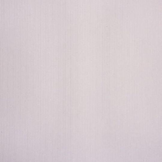 Шпалери Caselio Seasons SEN61291096 однотонні світло-сірі