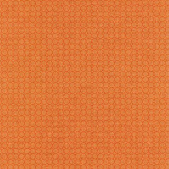 Обои Caselio Swing SNG68873126 круги фон оранжевые