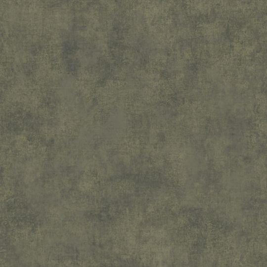 Обои Casadeco Stone STNE80837544 под штукатурку болотные