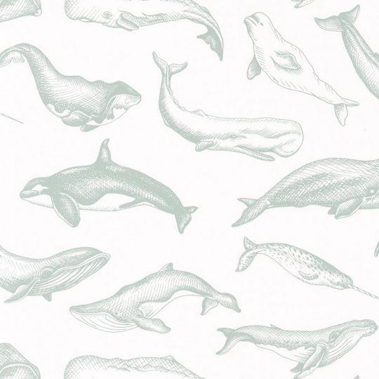 Обои Caselio Sea you soon SYO102797010 киты на белом фоне